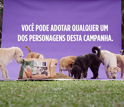 pets_qualita